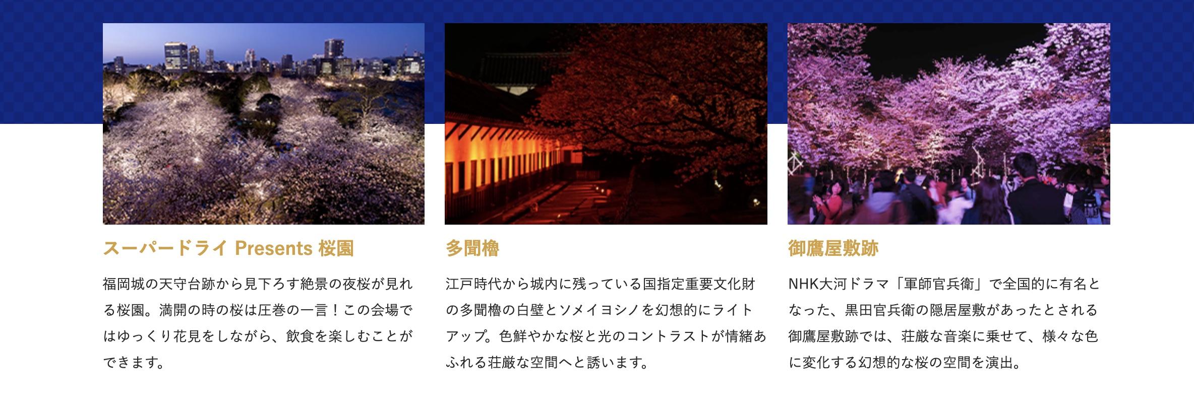 舞鶴公園-特別有料ライトアップ