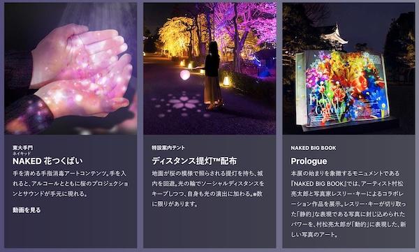 二条城桜まつり-ライトアップ1